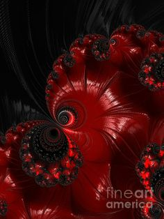 Red And Black...