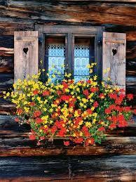Znalezione obrazy dla zapytania composizione de fleurs jaunes