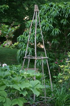I design gardens. This is my garden in St. Louis area. Organic, sustainable, English Cottage Gardens for the Midwest, Native Plants and Plants that Work. www.GardensForTheSoul.com