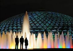 The conservatory will once again brighten the city's grey, wet winter with hol. - Celebration cakes for women, Party organization ideas, Party plannig business Star Trek Crew, Queen Elizabeth Park, Party Organization, Cakes For Women, Christmas Cactus, Exotic Birds, Holiday Lights, Jewel Box, For Stars