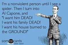 """I'm a nonviolent person until I see a spider. Then I turn into Al Capone and """"I want him DEAD! I want his family DEAD! I want his house burned to the GROUND!"""" lol so true Haha Funny, Funny Cute, Funny Stuff, Funny Things, Funny Shit, Random Stuff, Random Things, Random Thoughts, Deep Thoughts"""