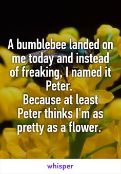 A bumblebee landed on me today and instead of freaking, I named it Peter.  Because at least Peter thinks I'm as pretty as a flower.