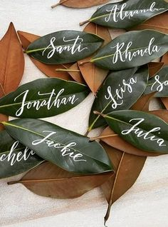 Leaf place cards Magnolia leaf place cards are a popular choice for an outdoor or rustic wedding. Wedding Table Name Cards, Wedding Place Names, Wedding Place Settings, Wedding Places, Words For Wedding Card, Diy Wedding Name Place Cards, Diy Table Cards, Card Wedding, Wedding Tables