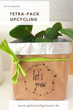 Best Indoor Garden Ideas for 2020 - Modern Presidential Campaign Posters, Tetra Pack, Garden Projects, Diy Projects, Recycling, Dorm Decorations, Puzzle Pieces, Lorem Ipsum, Upcycle