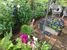 Garden, Artist, Plants, Garten, Lawn And Garden, Artists, Gardens, Plant, Gardening