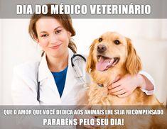 dia-do-medico-veterinario-13.jpg (730×565)