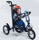 42 Best Bikes Amp Trikes Images Tricycle Bike Special Needs