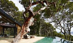 Enjoy plunge pools and top cuisine at lux Australian hilltop hideaway