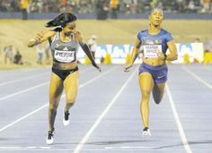 Bolt, Shelly lead glorious night of the stars - News