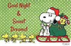 Goodnight and sweet dreams my pin pals and followers!❤