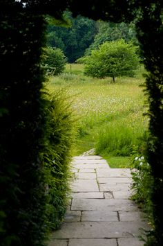 Arch through yew hedge with vista to meadow and orchard beyond, Great Dixter, East Sussex, England