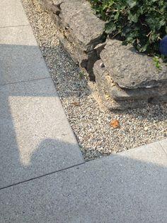 Lakeside Terrace, Terrace Garden, Sidewalk, Terraced Garden, Side Walkway, Sidewalks, Pavement, Walkways