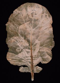 """Photographer Binh Danh observed one summer that there was a difference in color between grass under a water hose and the grass directly exposed to sunlight. He then began to experiment with combining photography with photosynthesis, and came up with what he calls """"chlorophyll prints"""" — photographs printed onto leaves using the sun."""