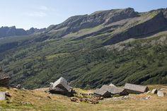 In der Natur unterwegs: Vier Täler, drei Pässe im Locarnese - Alpe Porcaresc - #ExpeditionLocarnese