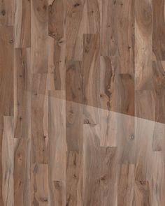 Kauri Kaimai Polished 8 x 48 Porcelain Wood Look Tile