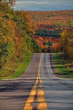 2811 by Ts Photo Kyoto Herbstfarben 2016 Herbstlaub im Kinzoji-Tempel in Kyoto Herbstlaub . The Road, Back Road, Beautiful Roads, Beautiful Places, Long Way Home, Winding Road, Fall Pictures, Take Me Home, West Virginia