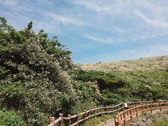 #southkorea #jejuisland #jeju #photosofnature #naturephotos #travel #travelnature #freedownload #heydayswithhanna #happyheydays Jeju Island, Nature Photos, South Korea, Free Images, Trail, Mountains, Outdoor, Outdoors, Korea