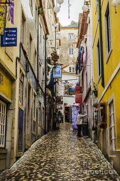 Day 3, Sintra street