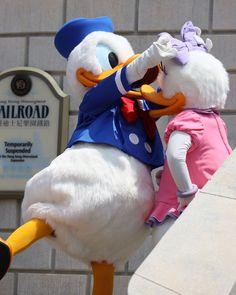 Disney World Characters, Disney World Magic Kingdom, Fictional Characters, Daisy Duck, Believe In Magic, Mickey And Friends, Ducks, Donald Duck, Inspirational