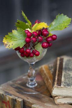 Berries in a globet