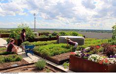 CommonGround-Land_Collective-11 « Landscape Architecture Works | Landezine