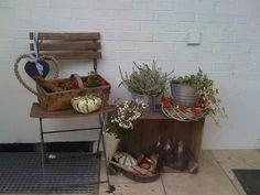 Herbstdeko innen und außen - Seite 4 - Deko & Kreatives - Mein schöner Garten online