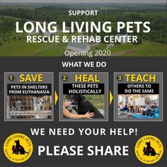 @rawpets posted to Instagram: Since this is Giving Tuesday I like to share something that is very dear to my heart and is also my next project...   Help me open the first natural rescue and rehab center for animals.   We are different since...  ✔ We will rescue unadoptable pets facing euthanasia due to medical conditions and/or behavioral issues.   ✔ We will  restore their physical and mental health using only NATURAL modalities.   ✔ We will share and teach our concept to others so they can…