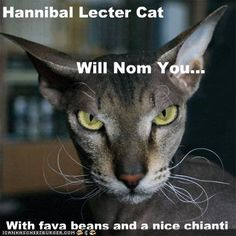 Hannibal Lecter Cat II
