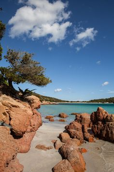 Rondinara bay, Corsica, France ✯ ωнιмѕу ѕαη∂у
