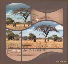 Plus d'éléphants, toujours a Tarangire...
