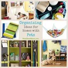 7 Helpful Organizing Ideas for Homes & People with Pets.