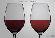 The 5 Basic Wine Characteristics or what words to use in wine tasting notes