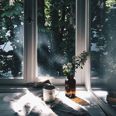 Morning sunshine. - ̗̀ make art, be art ̖́- pinterest | @eveniingtalks tumblr | @stormyglo instagram | @sincerelyimann