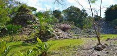 Muyil - Chunyaxche, Mayan ruins south of Tulum Mexico- LocoGringo
