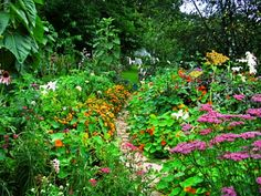 I feel that gardening is a lost art and should be brought back to life...houses are looking too dull now.