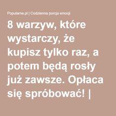 8 warzyw, które wystarczy, że kupisz tylko raz, a potem będą rosły już zawsze. Opłaca się spróbować! | Popularne.pl