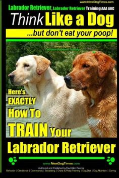 Labrador Retriever Labrador Retriever Training AAA AKC: Think Like a Dog  But Dont Eat Your Poop! | Breed Expert Training |: Heres EXACTLY How To TRAIN Your Labrador Retriever (Volume 1)
