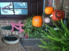Fall in the South.....Cute idea but with Arkansas Decor of course ;)