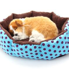 Masione Pet Bed Dog Puppy Cat Soft Cotton Fleece Warm Nest House Mat Light Blue -- You can find out more details at the link of the image.Note:It is affiliate link to Amazon.