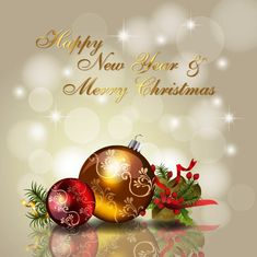 158 Best Christmas Wishes Images Images On Pinterest Christmas