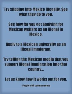 Illegal aliens, immigration secure our borders