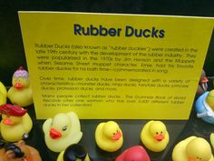 Character Rubber Ducks | Objects Objectified : Rubber Ducky You're The One