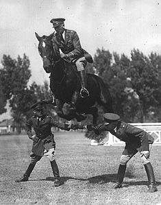 Whiskey, famed Army horse at Fort Snelling, prepares for the military and civilian horse show. 1930