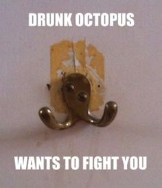 The first rule about drunk octopus is..