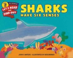 In the ocean, sharks are near the top of the food chain. Sharks have the same five senses as humans do, but they have an extra sixth sense that makes them especially deadly hunters. What is this sense and how does a shark use all six senses to track down prey? Read and find out! With colorful illustrations from Bob Barner and engaging text from John F. Waters, Sharks Have Six Senses is a fascinating look into one of the most powerful predators in the sea.