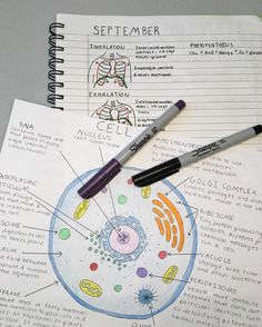 Medicine notes study How goddamn perfect are these notes? 21 Study Notes That Are Too Pure For This World Cute Notes, Pretty Notes, College Notes, School Notes, School Motivation, Study Motivation, Study Hard, Studyblr, Study Notes