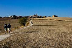 Peregrinos camino de Sansol, entre Los Arcos y Logroño. #Navarra #CaminodeSantiago #LUgaresdelCamino