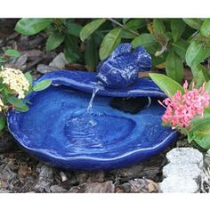 Amazon.com : Smart Solar 21372R01 Ceramic Solar Koi Fountain, Blue Glazed Finish, Powered by an Included Solar Panel that Operates an Integral Low Voltage Pump With Filter : Free Standing Garden Fountains : Patio, Lawn & Garden