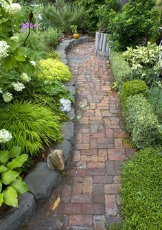 Schlede and Bazan dug down in the mess of an old yard to unearth old stones and brick pathways. This shady side garden is freshly planted with Japanese forest grass, hostas, hydrangeas and boxwood.