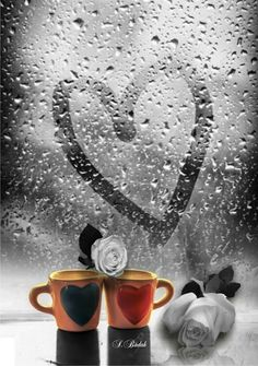 Color Splash, Images Of Chocolate, More Images, Romantic Dinners, Coffee Love, One Color, Beautiful Images, Amazing Photography, Good Morning